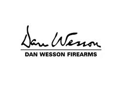 dan wesson airsoft gun